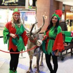 Santas Elves along with our reindeer at Victoria Square Christmas Light Switch on